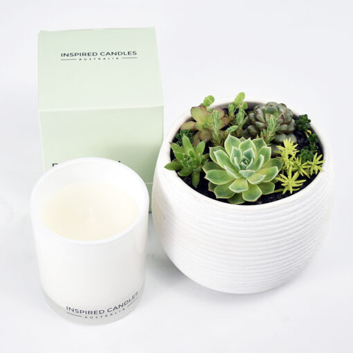 Succulent Bowl and soy candle plant gifts