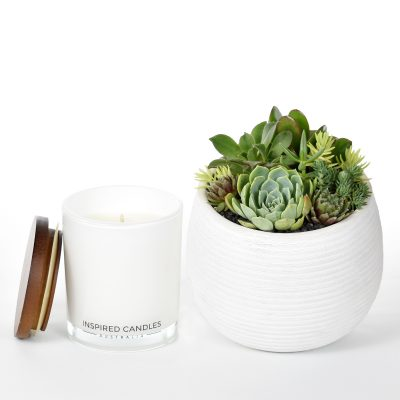 Succulents in ceramic bowl and luxury soy candle