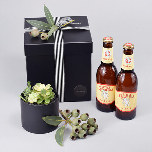 Father's Day Succulents & Craft Beer