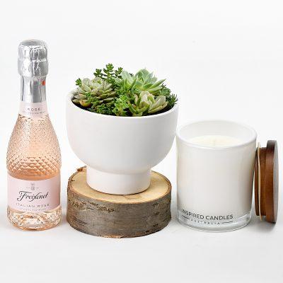 Appreciation Plant Gift Box
