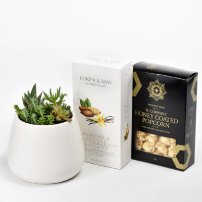 Succulents and gourmet gift box