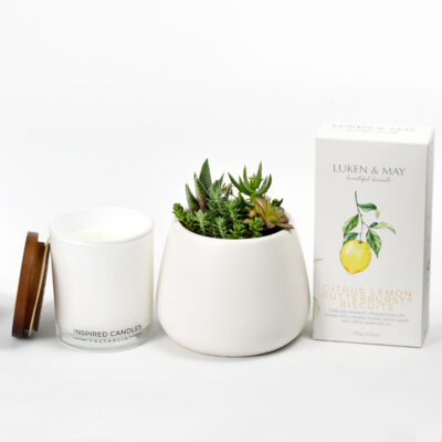 Plant Gift Box biscuits and soy candle