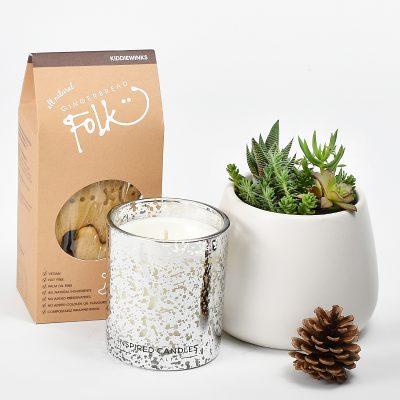Christmas Plant Gift Boxes