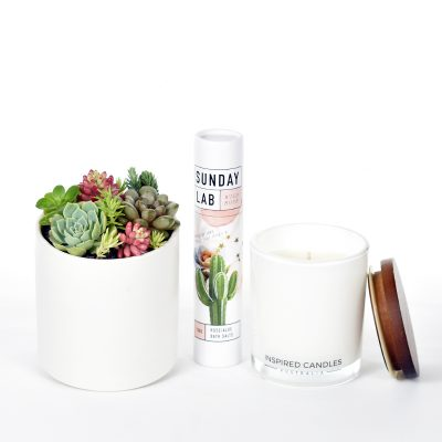 Succulents in ceramic pot, bath salts and soy candle