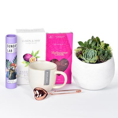 Succulents in white ceramic bowl with tea, infuser biscuits, chocolate and stoneware mug