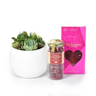 Succulent Sweetie Gift Box